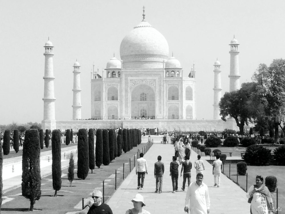 The Taj Mahal pictures