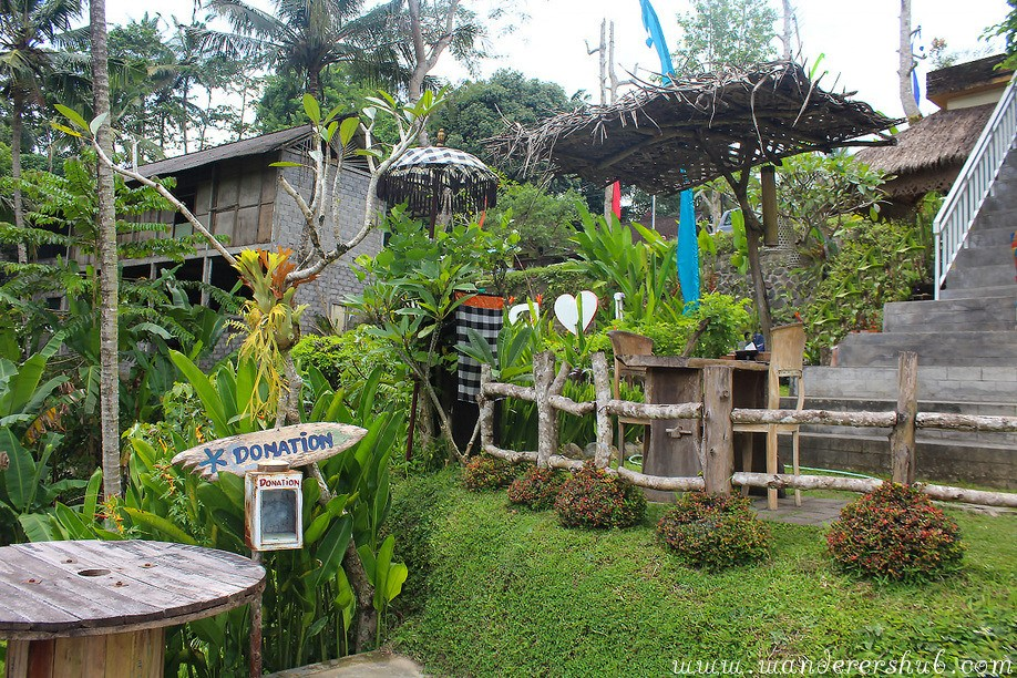 Bali rice paddies in Ubud