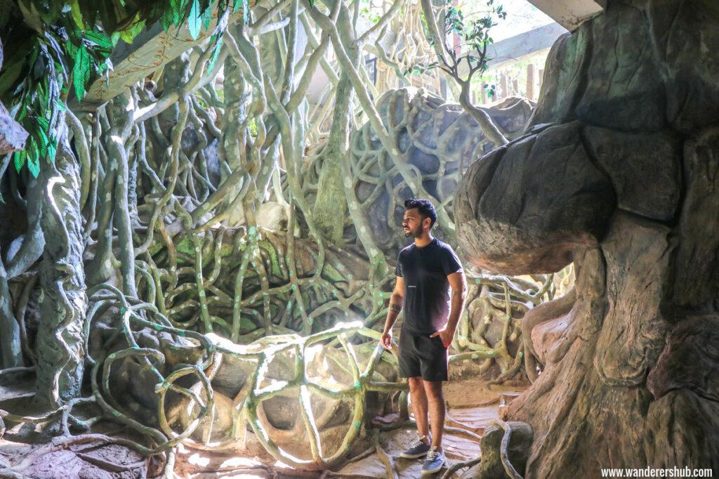 Chandy's Windy Woods Munnar trek